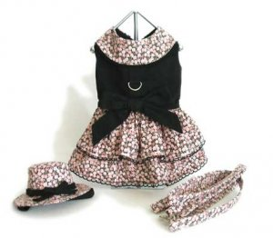 Small Black And Pink Rose Dog Dress With Matching Hat And Leash