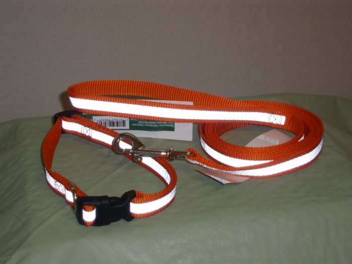 Reflective Safety Collar and Lead