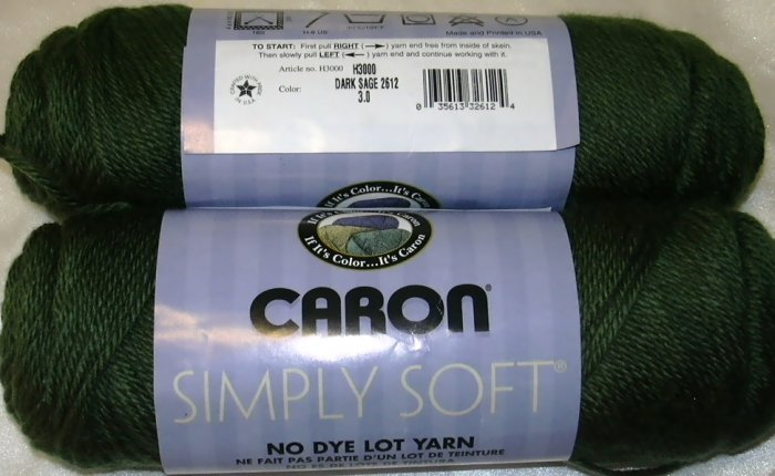 Caron Simply Soft Yarn No Dye Lot 3 oz Skeins ~ Dark Sage 2612