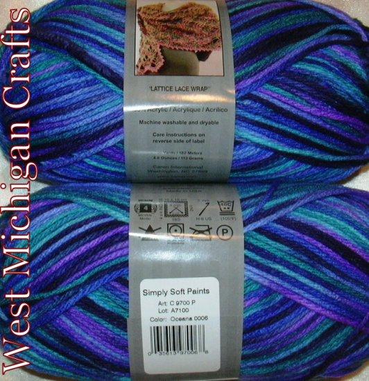 Caron Simply Soft PAINTS Yarn 4 oz Skein ~ Oceana 9700-6