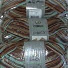 Caron Simply Soft PAINTS Yarn 4 oz Skein ~ Driftwood 9700-5