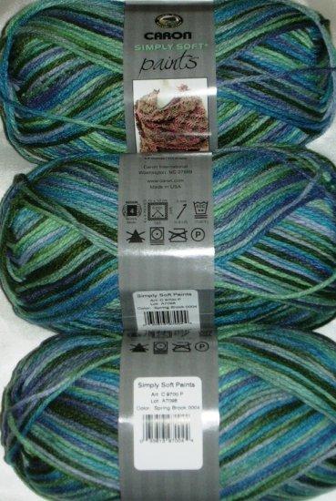 Caron Simply Soft PAINTS Yarn 4 oz Skein ~ Spring Brook 9700-4