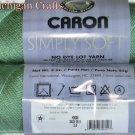 Caron Simply Soft Yarn No Dye Lot 3 oz Skeins ~ Sage 2611