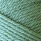 Caron Simply Soft Eco Yarn 5 oz skein ~ Sprig 0016