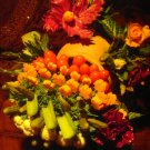 Rima Dream