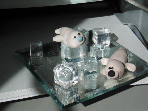 Baby Seals on Ice
