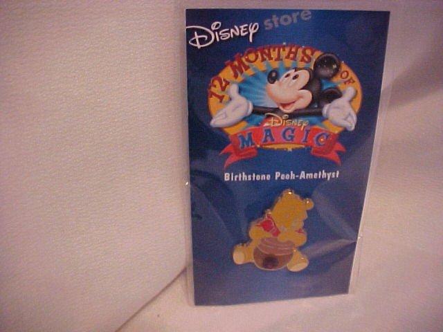 Disney Winnie The Pooh Amethist Pin-Pins