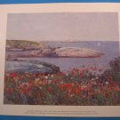 Poppies,  Isles of Shoals by Childe Hassam Art Print