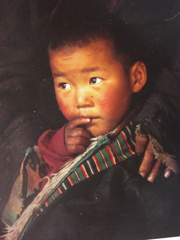 Sonam, Sheperd's Son in Tibet Postcard by Olivier Follmi