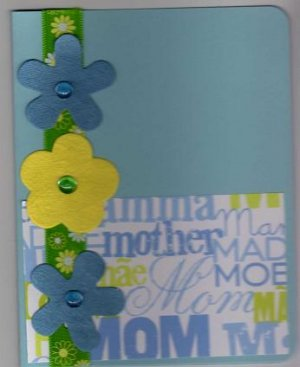 Mother Card-Blue
