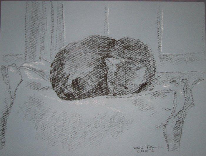 Original Conte Crayon Drawing Cat sleeping by window Art by LJT
