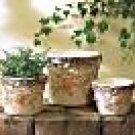 Nesting Flower Pots
