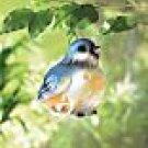 Baby Bluebird Lantern