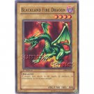 YuGiOh Card MRD-062 1st Edition - Blackland Fire Dragon [Common]