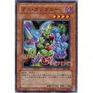 YuGiOh Japanese Card 306-005 - Des Kangaroo [Common]