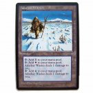 Adarkar Wastes - Ice Age - Magic the Gathering Role Playing Single Card (MGT3)