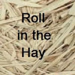Roll In The Hay - Gag Gift Novelty - Great Pick up line