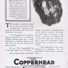 The Copperhead 1920 Silent Civil War Film Original Movie Ad with Lionel Barrymore