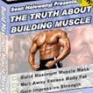 The Honest Truth About Muscle Growth