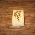 Baby's Breath Wood Mounted Rubber Stamp by Stampendous