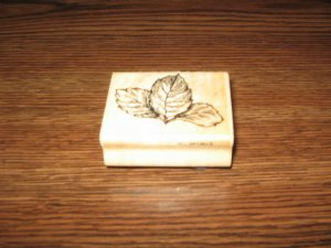 Leaf Trio Wood Mounted Rubber Stamp by Stampendous