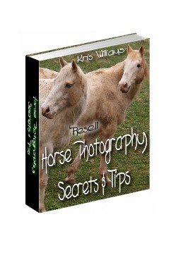 Horse Photography by Kris Williams - Resell eBook!