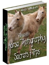 Horse Photography Secrets and Tips by Kris Williams - Resell eBook