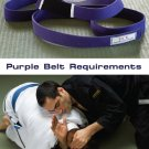 BJJ Purple Belt Requirements 2 DVD Set by Roy Dean