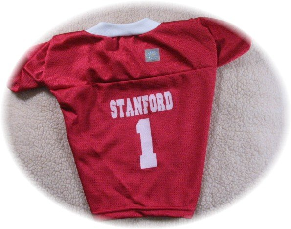 Stanford Cardinal Deluxe NCAA Sports Logo Dog Jersey XL Size