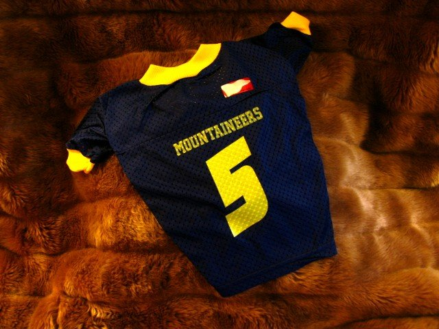 West Virginia University WVU Mountaineers Deluxe NCAA Dog Jersey 2X Size Gold Lettering
