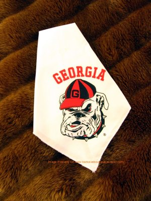 Georgia Bulldogs Dog Bandana Official NCAA Football Pet Apparel
