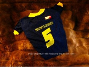 West Virginia University WVU Mountaineers Deluxe NCAA Football Gold Lettering Dog Jersey Petite