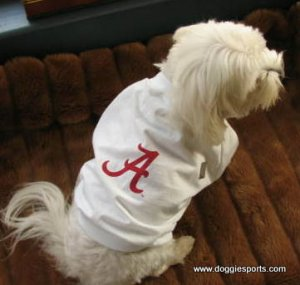 Alabama Crimson Tide NCAA Sports Dog Football Tee Shirt Large Size