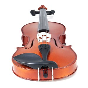 Cecilio Violin 4/4 Model CVN-100