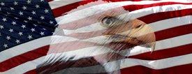 American Flag 1 w/ Eagle - Truck Window Perf