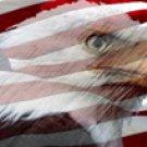 American Flag 1 w/ Eagle - Car Window Perf
