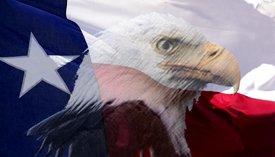 Texas Flag w/ Eagle - SUV Window Perf