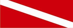 Diving Flag - SUV Window Perf