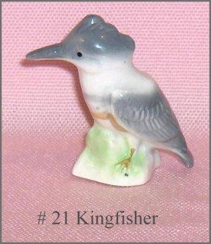 Kingfisher Scarce  Canadian Tenderleaf Tea  Premium Bird  #21