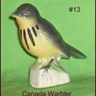 Canadian Tenderleaf Tea Bird  Canada Warbler