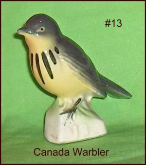 Canadian Tenderleaf Tea Bird  Canada Warbler