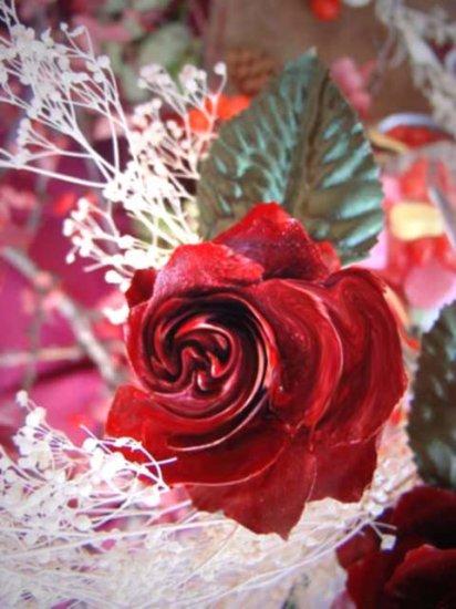 "Sensual Rose**8""x10"" Matted original Photo"