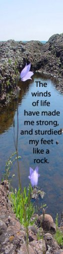 Winds of Life***Inspirational