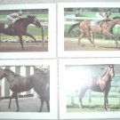 8 DIFFERENT COLORFUL THOROUGHBRED RACING PHOTOS