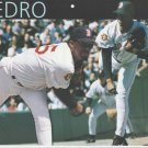 Boston Red Sox Pedro Martinez 2001 Pinup Photo 8x10