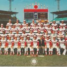 1982 Chicago White Sox Team Photo Comiskey Park Carlton Fisk Harold Baines Tony LaRussa 11x81/2