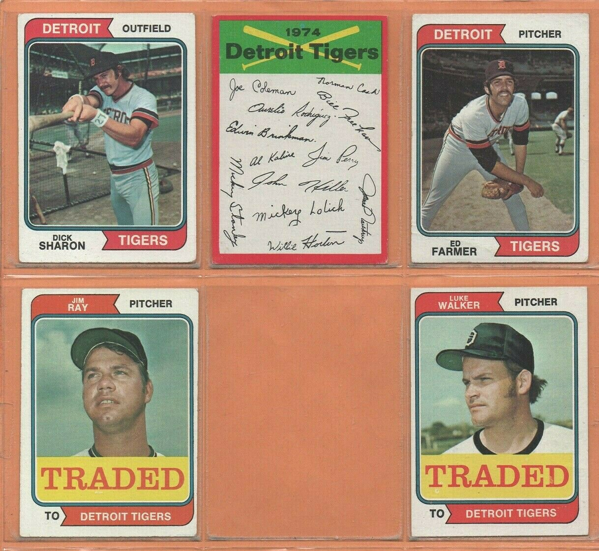 1974 1975 Topps Detroit Tigers Team Lot 17 diff Mickey Stanley Ben Oglivie Joe Coleman Aurelio