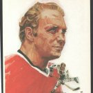 Chicago Blackhawks Bobby Hull 1972 DK Stone Artwork 8x10