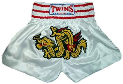 Twins Muay Thai boxing shorts dragon XL new TBS-64