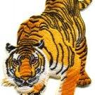 Tiger cat puma jaguar lion animal wildlife LARGE applique iron-on patch S-495
